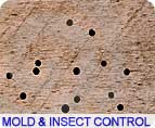 Pest Control - Aim Engineering